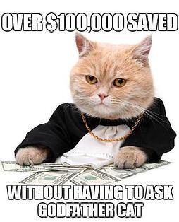 Loan Modification - Godfather Cat