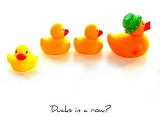 foreclosure-summary-judgment-ducks