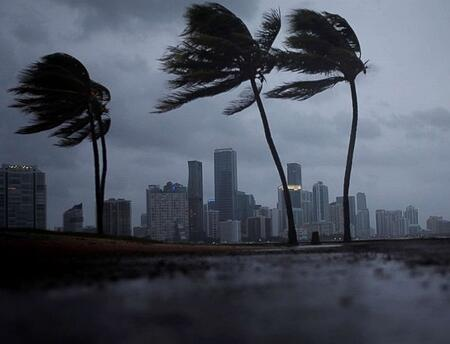 Did Your Hurricane Irma Forbearance Cause Foreclosure