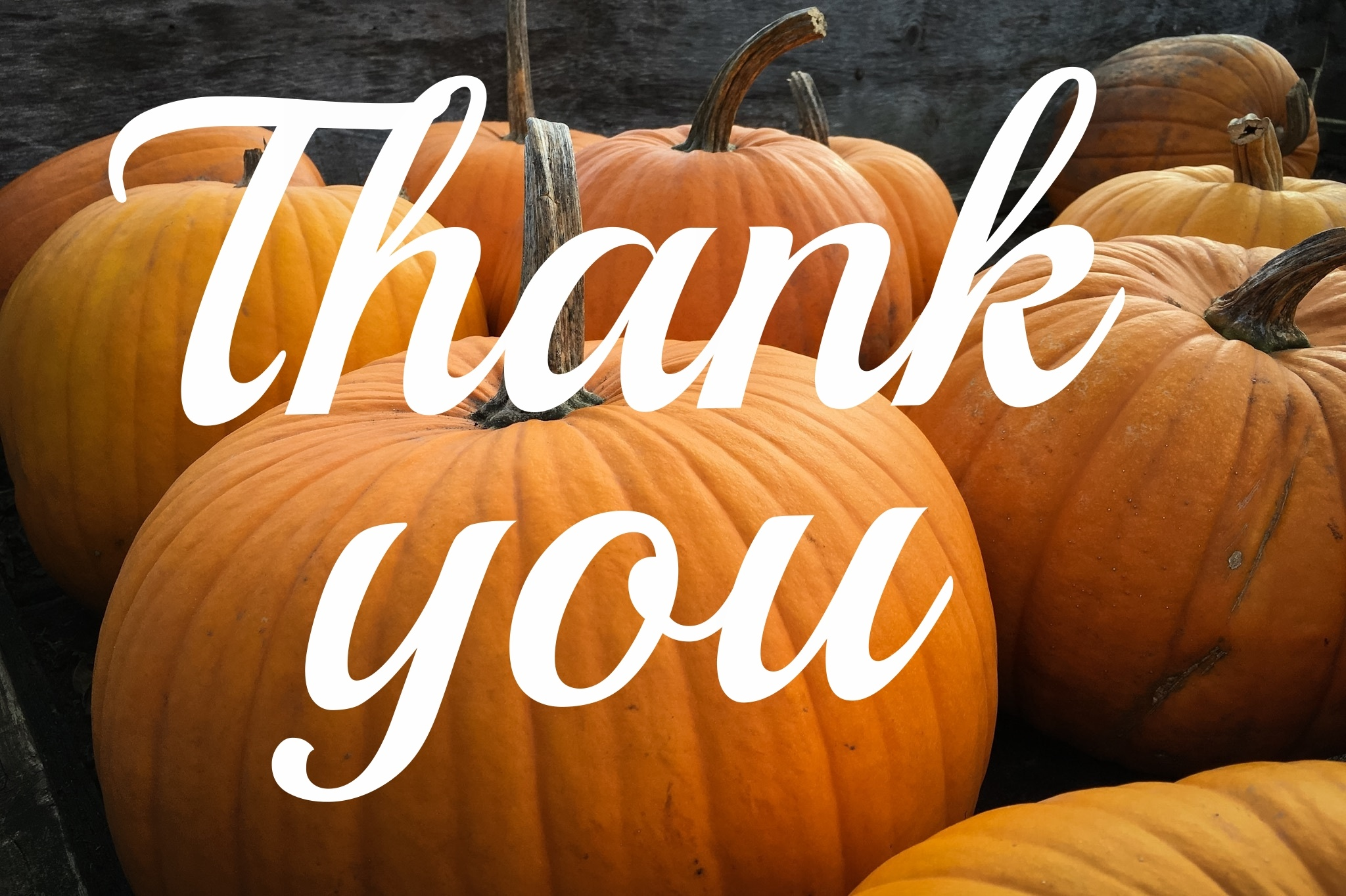 An experienced attorney can take some of the stress out of life and have you giving thanks.