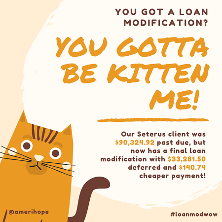 You gotta be kitten me! Our Seterus client was $90,324.92 past due, but now has a final loan modification with $33,281.50 deferred and $140.74 cheaper payment!