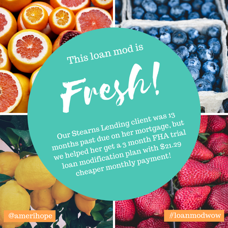 Our Stearns Lending client was 13 months past due on her mortgage, but we helped her get a 3 month FHA trial loan modification plan with $21.29 cheaper monthly payment!