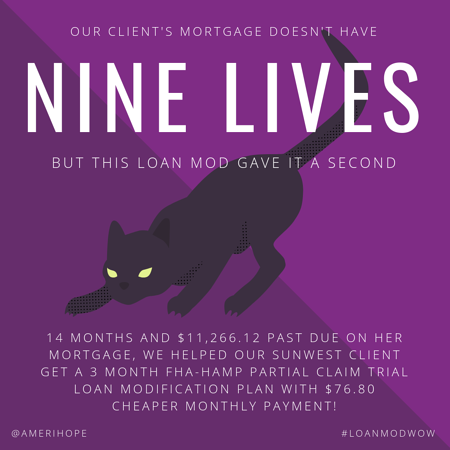 14 months and $11,266.12 past due on her mortgage, we helped our Sunwest client get a 3 month FHA-HAMP Partial Claim trial loan modification plan with $76.80 cheaper monthly payment!